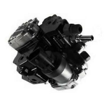 Dynapac 357023 Reman Hydraulic Final Drive Motor