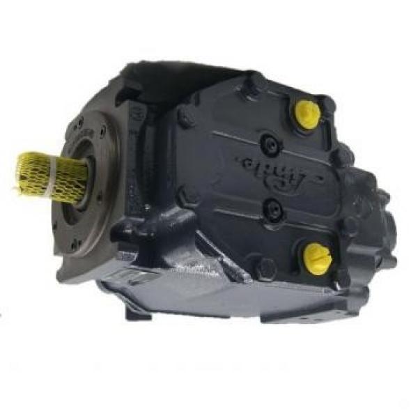 Hitachi EX17 Hydraulic Fianla Drive Motor #1 image