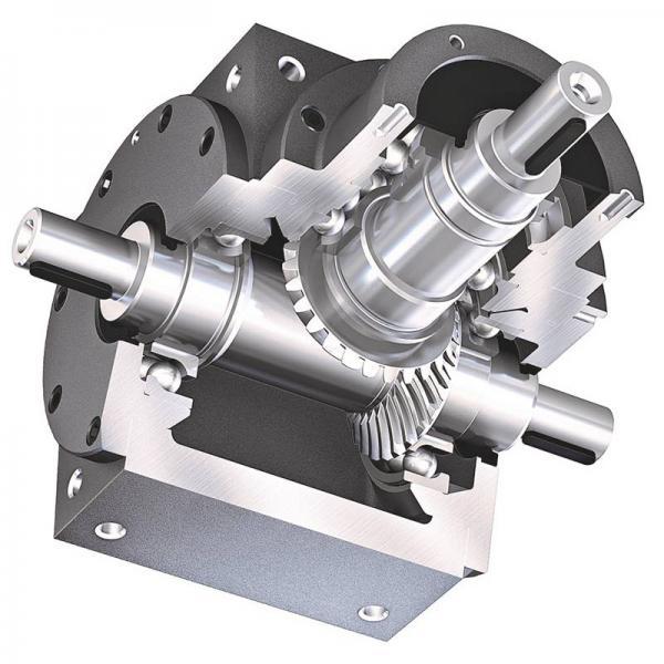 Pel Job EB12.4 Hydraulic Final Drive Motor #1 image